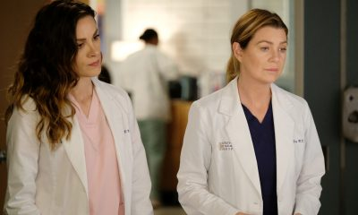 Grey's Anatomy Snowblind Review 16x15