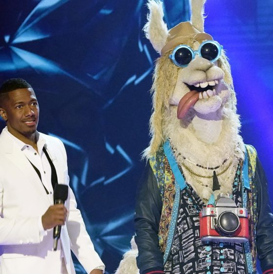 The Masked Singer - reality TV shows you should watch in 2020